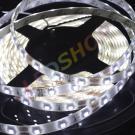 LED лента 60LED 3528 IP65